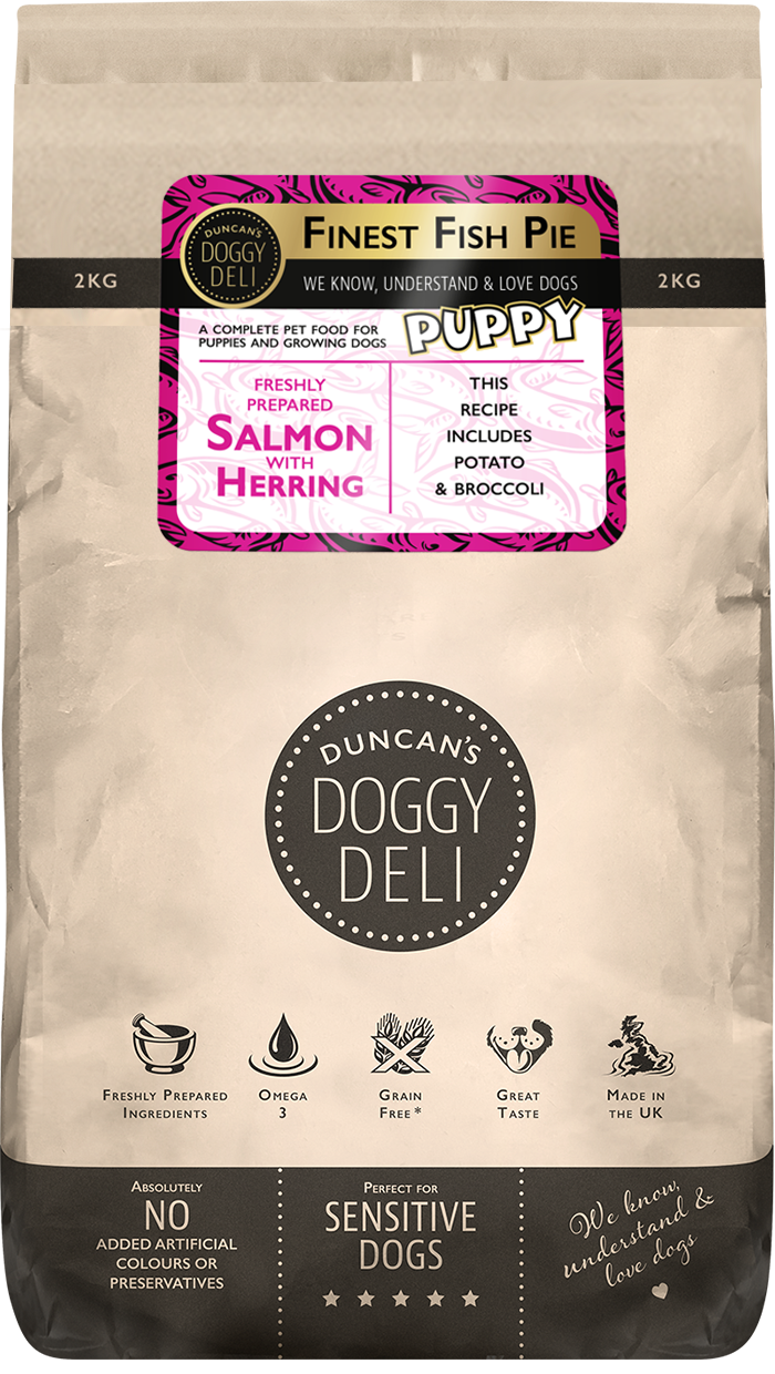 Puppy food - Salmon